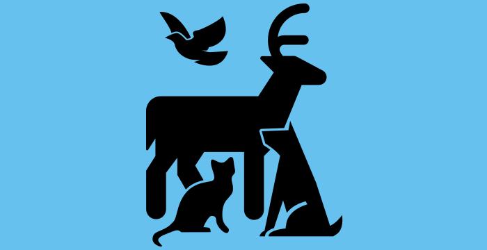 Nuire aux animaux ? (à partir de Animals par Pete Fecteau)